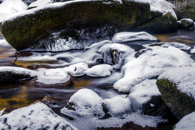 Feldaisttal_Winter_Pregarten_010