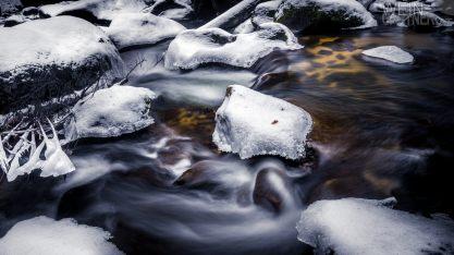 Feldaisttal_Winter_Pregarten_011