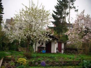 2013-05-01_Garten01
