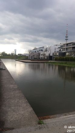 2017-04-18_Petrisberg-Sonstwas05