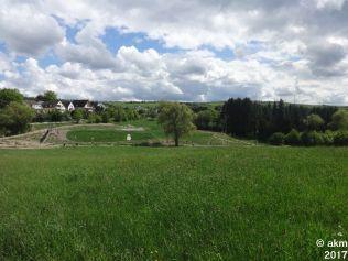 2017-05-13_FreundschaftslaufOlewig11