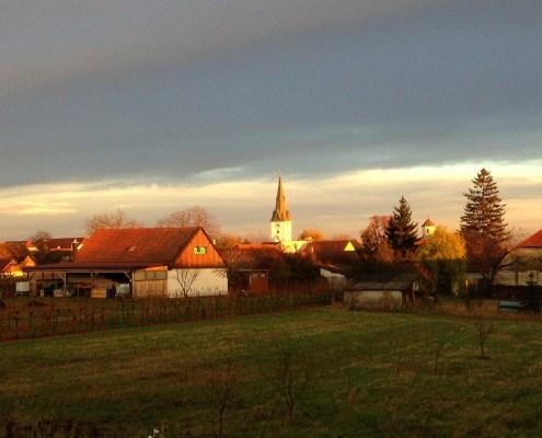 Dorf im Weinviertel in Abendsonne