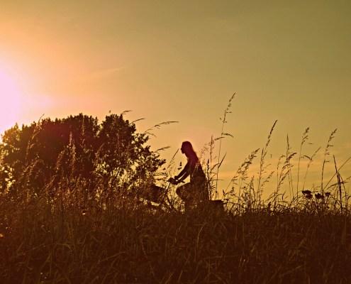 Radfahrerin in Abendsonne