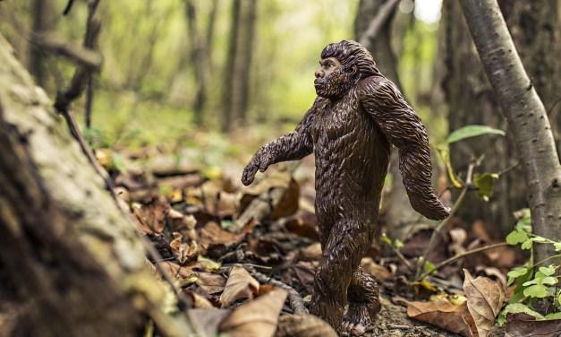 Mythology Behind Bigfoot