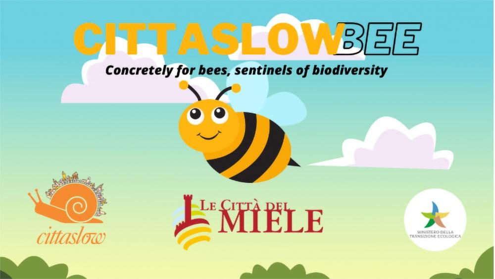 300 Cittaslow Towns Around The World Work To Save Bees