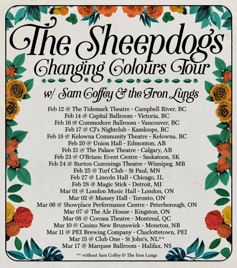 sheepdogs-poster-2018-800x907