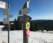 Schwarzwald10