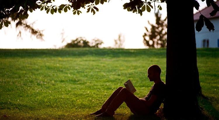 Ein ungeübtes Gehirn ist schädlicher für die Gesundheit als ein ungeübter Körper. - Zitat von George Bernard Shaw