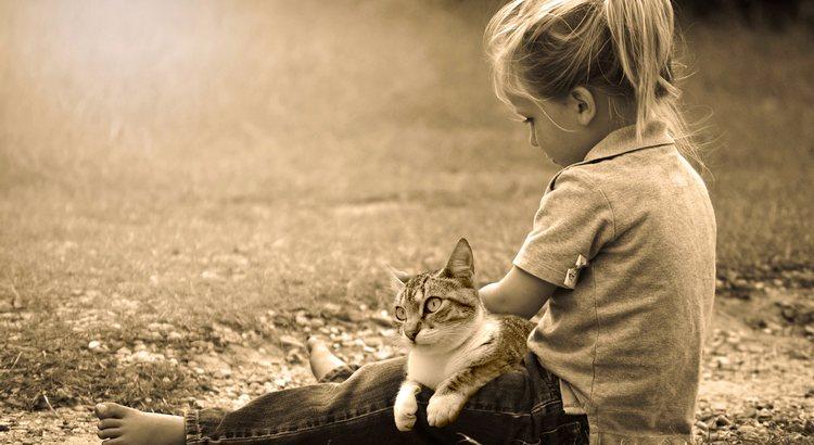 Warum können Katzen wunde Seelen heilen? Ganz einfach: Sie haben keinerlei Vorurteile, unterliegen keinem Schönheitsideal. Ihnen ist es gleichgültig, ob wir hübsch oder häßlich, mager oder fett, nach neuestem Trend oder 2nd Hand gekleidet sind. Sie messen uns nicht an beruflichen Erfolgen, kennen keine IQ-Unterschiede, arm oder reich – egal! Ihnen genügen wir genauso, wie wir sind. Das haben sie jedem Menschen voraus. - Unbekannt
