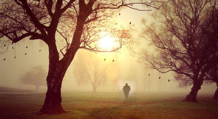 """Auf meiner Reise traf ich einen weisen, alten Mann. Ich fragte ihn: """"Was ist wichtiger: Lieben oder geliebt zu werden?"""" Er sah mich an, lächelte und sagte: """"Welchen Flügel braucht ein Vogel zu fliegen? Den linken oder den rechten?"""""""