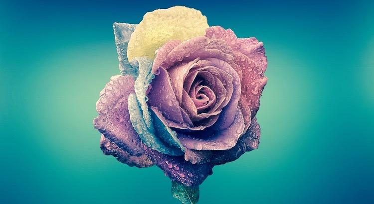 Das Leben ist viel zu bunt, als dass man es einfarbig betrachtet. - Esragül Schönast