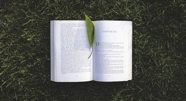 Zitate Und Sprüche über Bücher Bildung Tv Verblendung