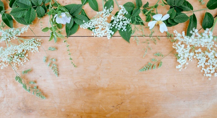 Das Leben bietet Sonnenstrahlen,Blumen,Lachen und Liebe und du lässt dich immer noch runterziehen? - Esragül Schönast