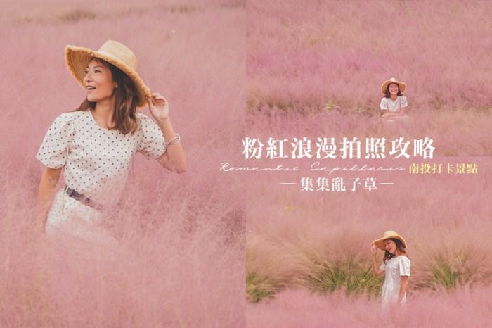 粉紅芒草亂子草打卡景點//南投景點和平快樂田園,不用出國也可以拍到覺美浪漫粉紅粉黛亂子草