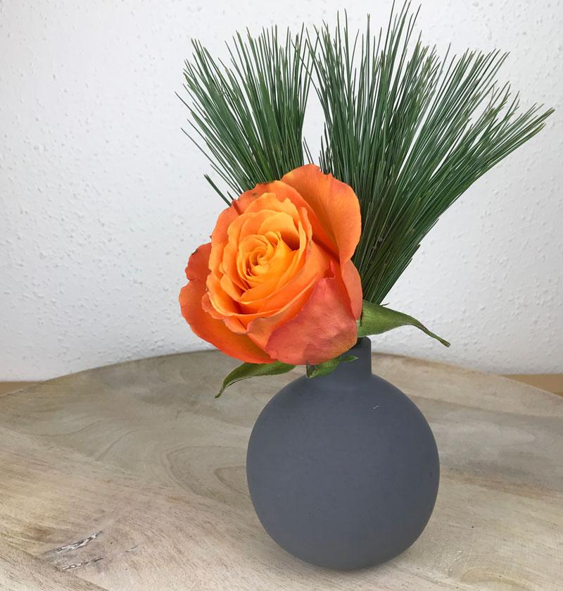 rose58.jpg