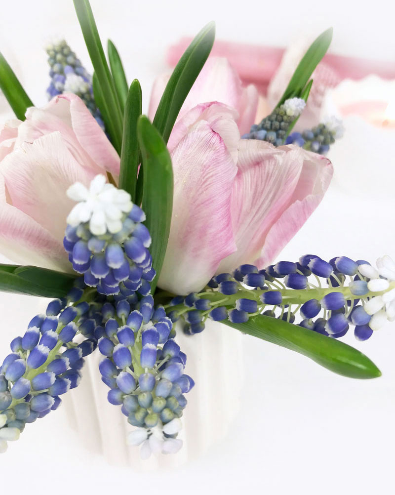 spring4-NEU.jpg