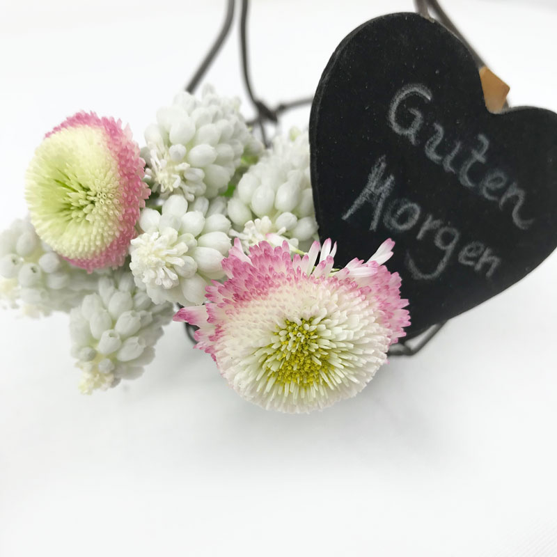 GM-Spring.jpg