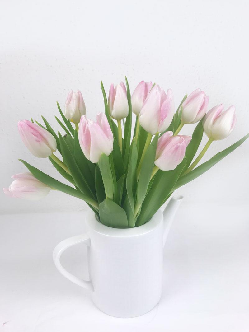 rose-tulp.jpg