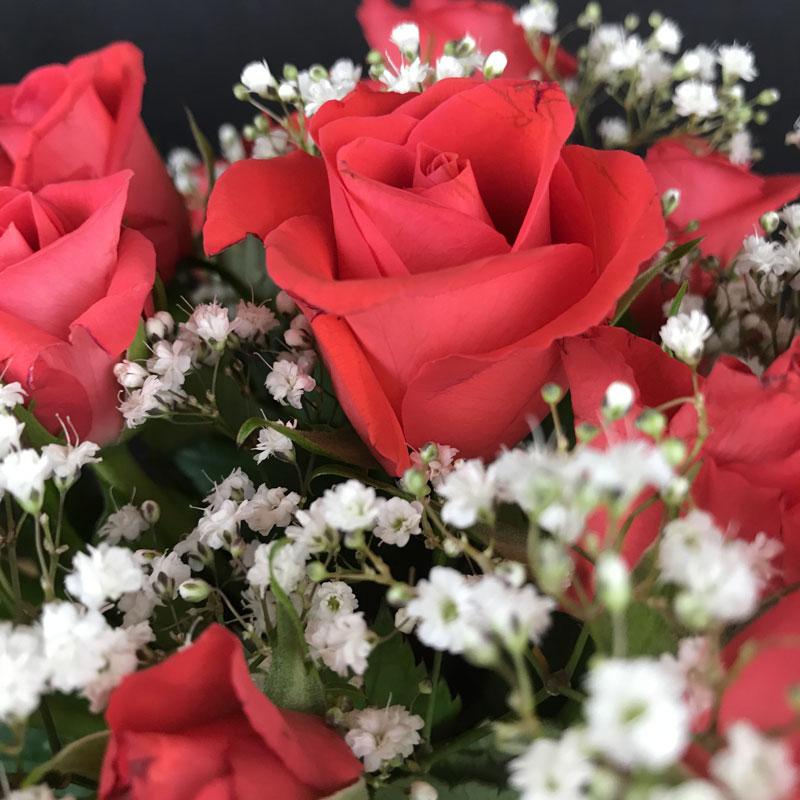 rosen18.jpg