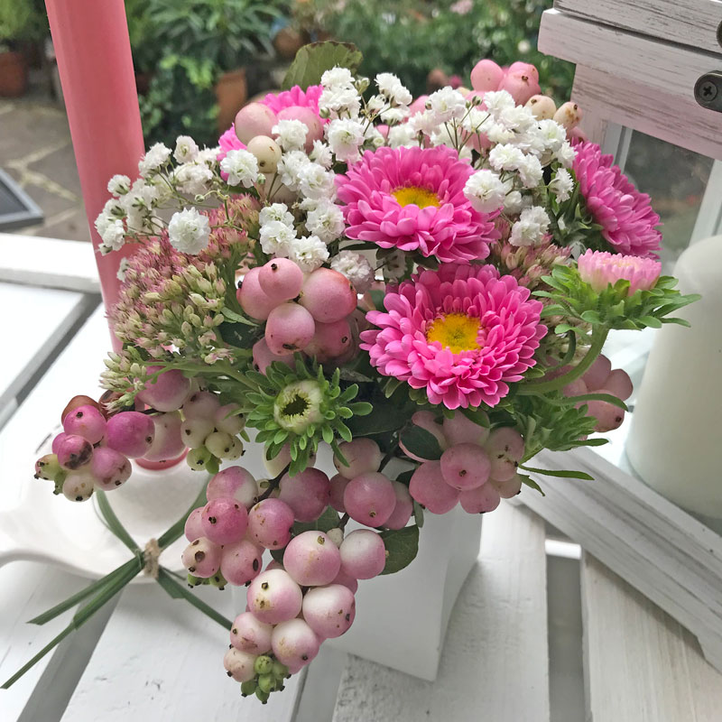 rosa11.jpg