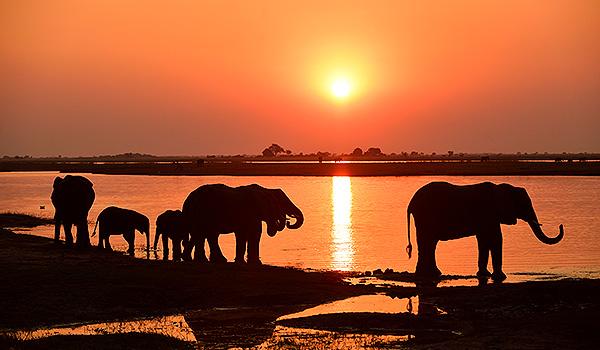 Namibia-Botswana Thomas Sbampato
