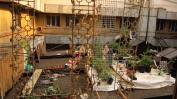 Hoch über der Stadt hat sich auch ein Dachgarten entwickelt