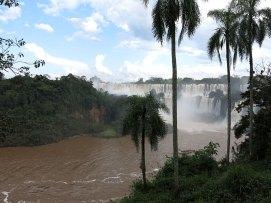iguazu_argentinia_upper_trail_07