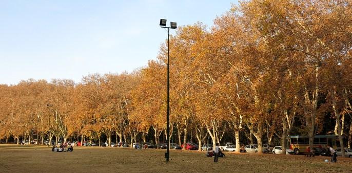 Herbst in Mendoza ... so schön!