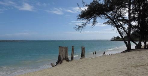hawaii_beach_05