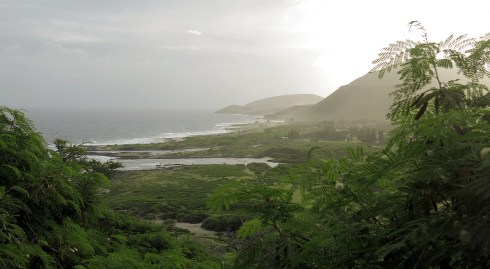 hawaii_coast_05