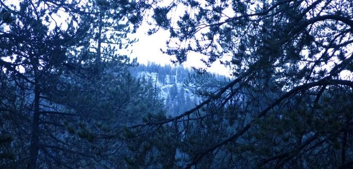 Der Schnee hängt noch in den Gipfeln.