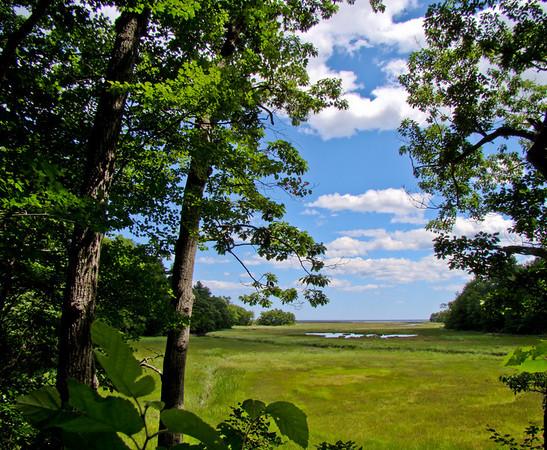 Vista: Rachel Carson NWR