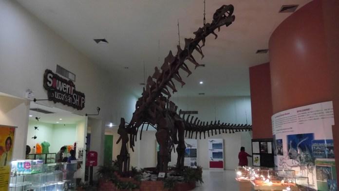 fossil_museum_korat21