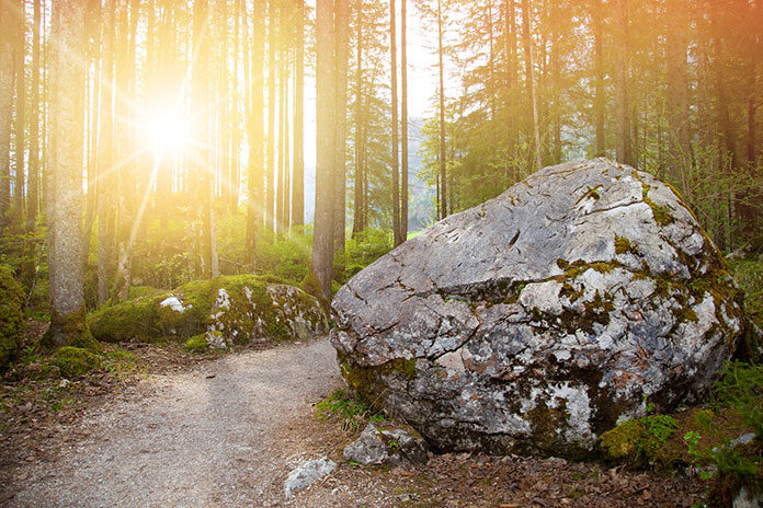 Top 5 hiking trails in Germany