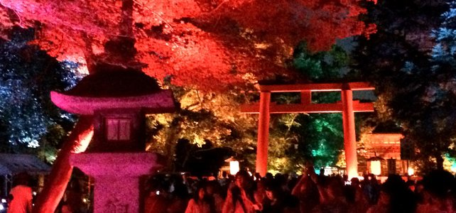 Light Festival at Shimogamo Jinja Shrine.