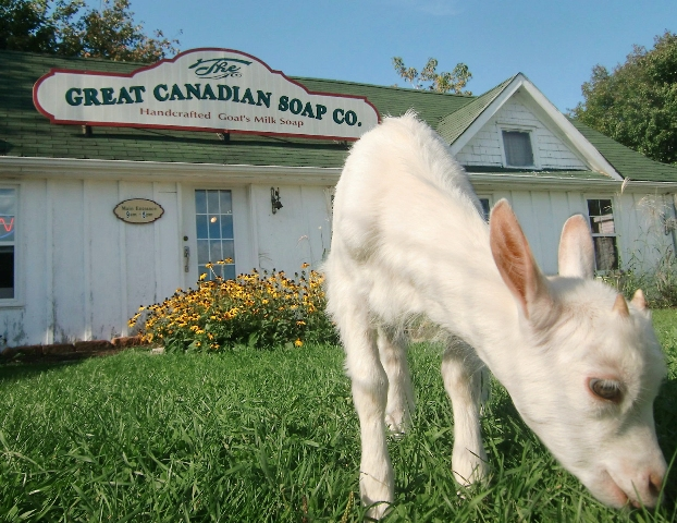 Great Canadian Soap Company is located in Brackley Beach, Prince Edward Island