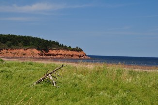 This is a photo of the famous red sandy cliffs of PEI. Taken near North Rustico