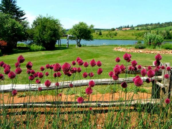 Gardens of Hope at Prince Edward Island Preserve Company