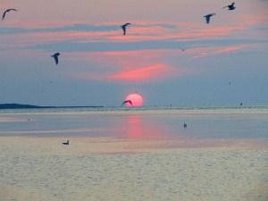 Northport sunrise