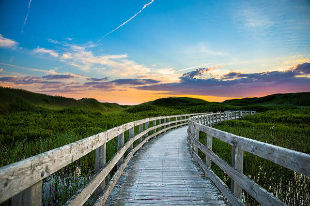 Photo by Carrie Gregory ©Tourism PEI