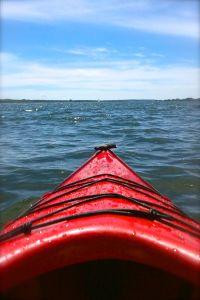 Paddles in Prince Edward Island