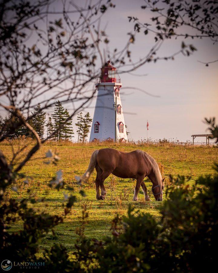 Panmure Island Lighthouse | Photo by Landwash Studios