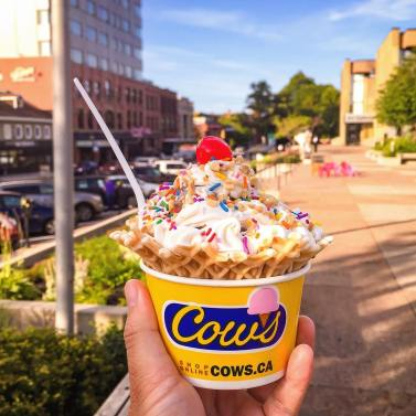 COWS Ice Cream | Photo by Jason Chuong