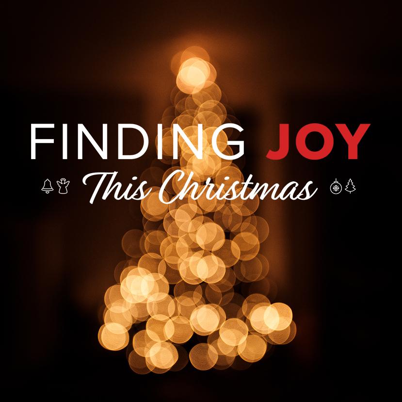 The Great Joy Thief