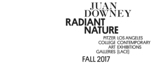 Juan Downey: Radiant Nature