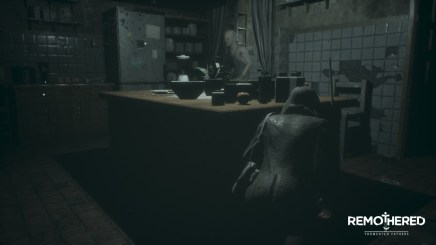 04 - Remothered TF Switch