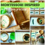 Tot School: Montessori inspired peas unit and free printables