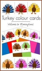 Turkey Colour Cards