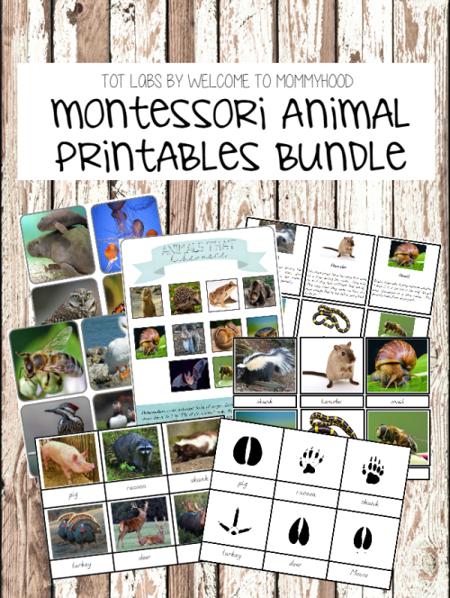 Montessori animal printables bundle