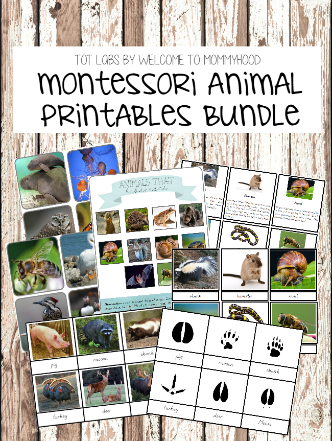 Montessori animal printables bundle